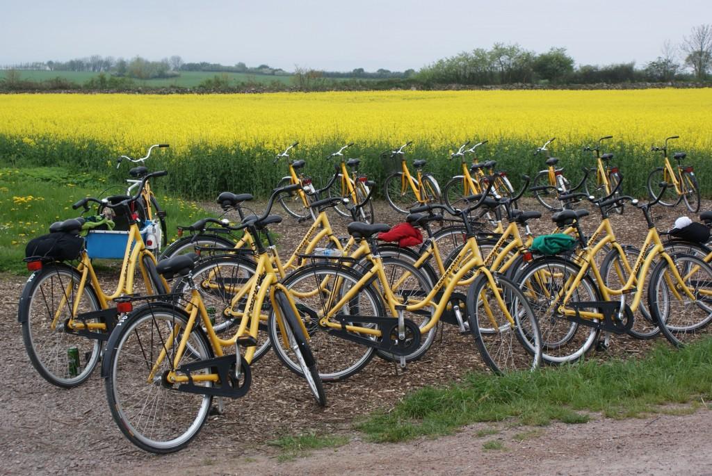 Die Insel der gelben Fahrräder